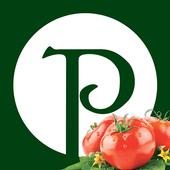Pasquale's Pizza icon