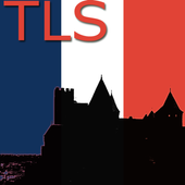 Toulouse Map icon