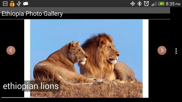 Tourism Ethiopia screenshot 11