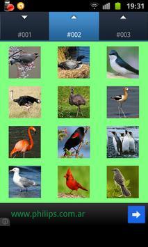 Birds Wallpapers apk screenshot