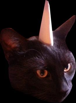 Cat Unicorne apk screenshot