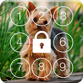 Yorkshire Terriers HD PIN Lock icon