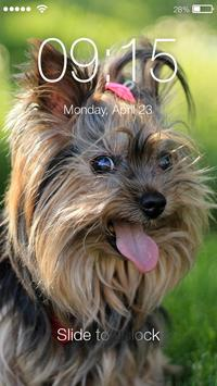 Yorkshire Terriers HD PIN Lock poster