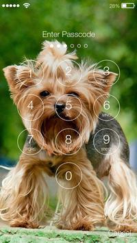 Yorkshire Terriers HD PIN Lock screenshot 1