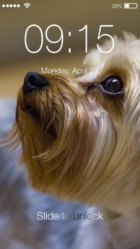 Yorkshire Terrier Screen Lock poster