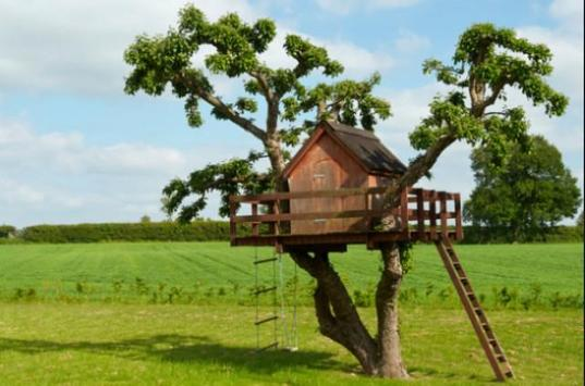Tree House Design screenshot 12