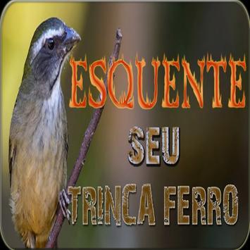 ESQUENTE SEU TRINCA FERRO poster