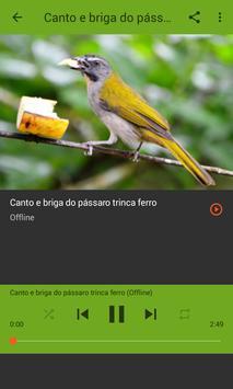 ESQUENTE SEU TRINCA FERRO apk screenshot
