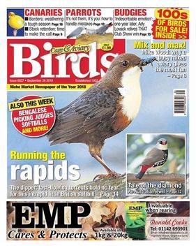 Cage & Aviary Birds poster