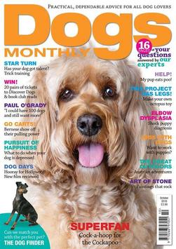 Dogs Monthly poster
