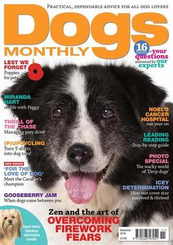 Dogs Monthly Magazine poster