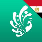 NKM Cairo - Provider icon