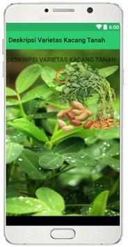 Deskripsi Varietas Unggul Kacang Tanah poster