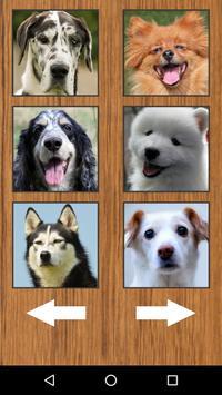 Cute Dog Puppy Sounds apk screenshot
