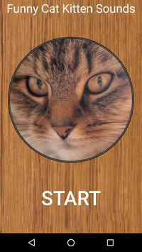 Funny Cat Kitten Sounds poster