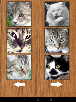 Funny Cat Kitten Sounds apk screenshot