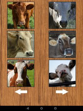 Funny Cow Farm Sounds screenshot 7
