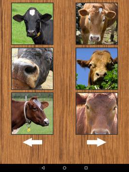 Funny Cow Farm Sounds screenshot 11