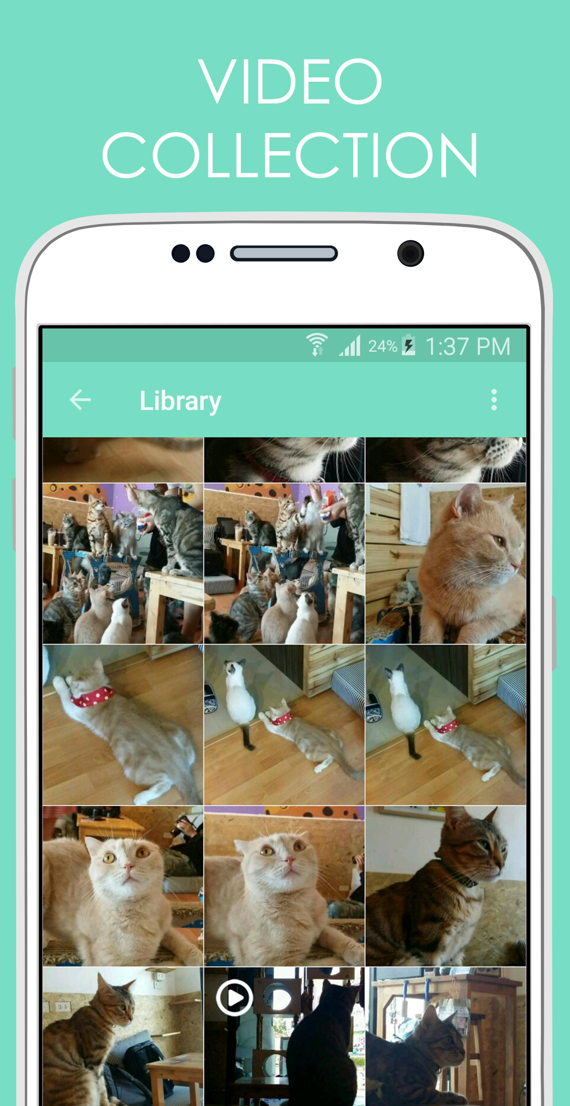 TrolloCam - Cat Prank Recorder for Android - APK Download