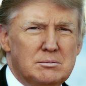 Donald Trump Twitter icon