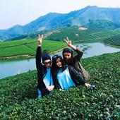Thanhchuong Nauy icon
