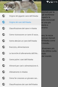 Alaska Itali poster