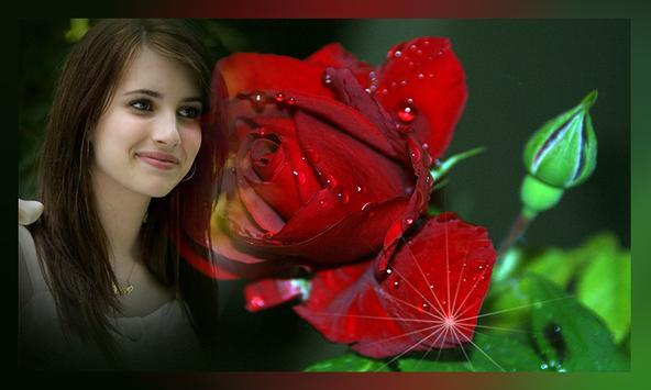 Romantic Rose Photo Frames poster