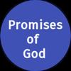 Promises of God icône
