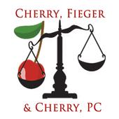 Auto Injury Lawyers icon