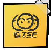 TSF Notepad Widget icon
