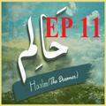 Haalim 11 Urdu novel Nimrah Ahmed