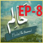Haalim 8 urdu novel Nimrah Ahmed Nemrah icon