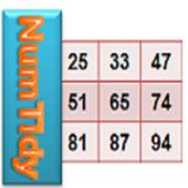NumTidy icon