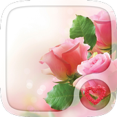 Pink rose Love Wallpapers icon