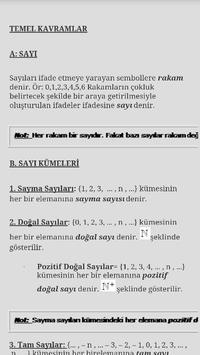 Ales Matematik poster