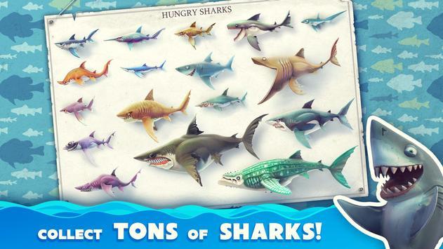 Hungry Shark 海報