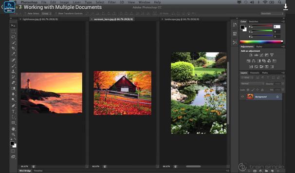 Basic Photoshop - Udemy Course screenshot 15