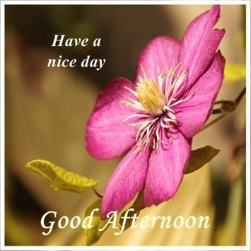 Good Afternoon Images For Android APK Download Impressive Gud Afternoon Image Download