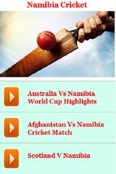 Namibia Cricket poster