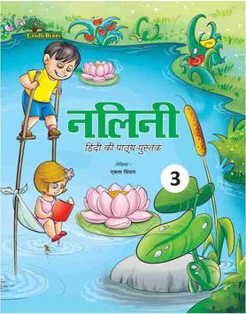 Nalini Hindi 3 poster