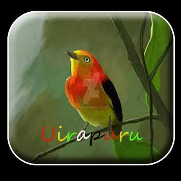 Canto de Uirapuru mp3 Offline poster