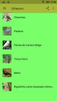 Canto de Uirapuru mp3 Offline screenshot 2