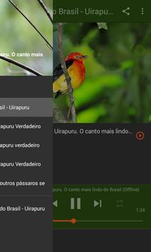 Canto do uirapuru apk screenshot
