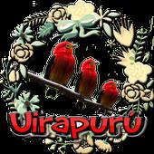 Canto do Uirapuru Verdadeiro icon