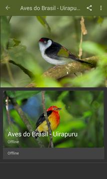 Canto do Uirapuru Verdadeiro screenshot 1