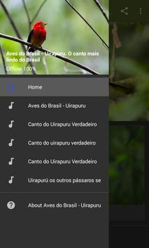 Aves do Brasil - Uirapuru screenshot 1