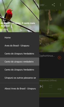 Aves do Brasil - Uirapuru screenshot 4