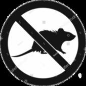 Anti Rat Simulator icon