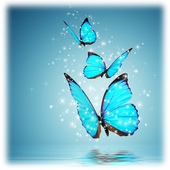 Free Wallpapers Butterfly icon