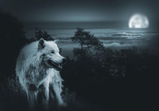 Vicious Wolf Puzzles screenshot 3